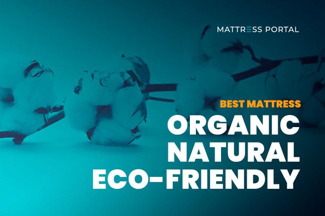 Best Organic Natural Mattress